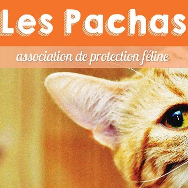 Association Les Pachas
