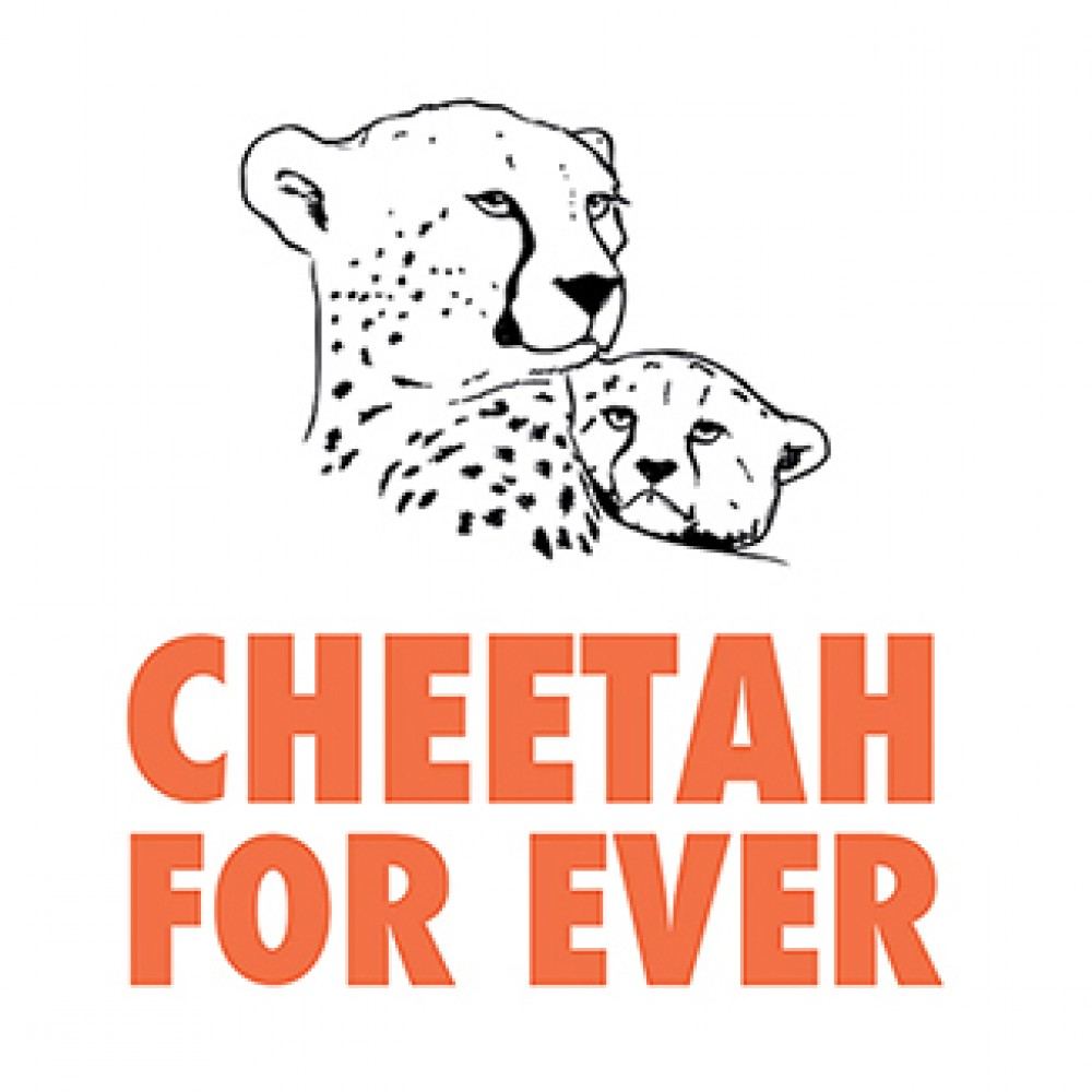CHEETAH FOR EVER
