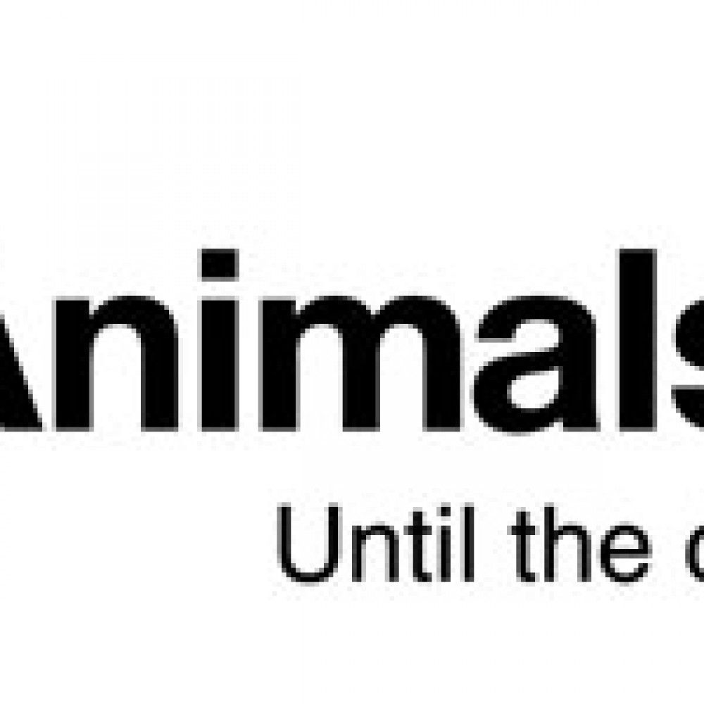 Animals Asia France