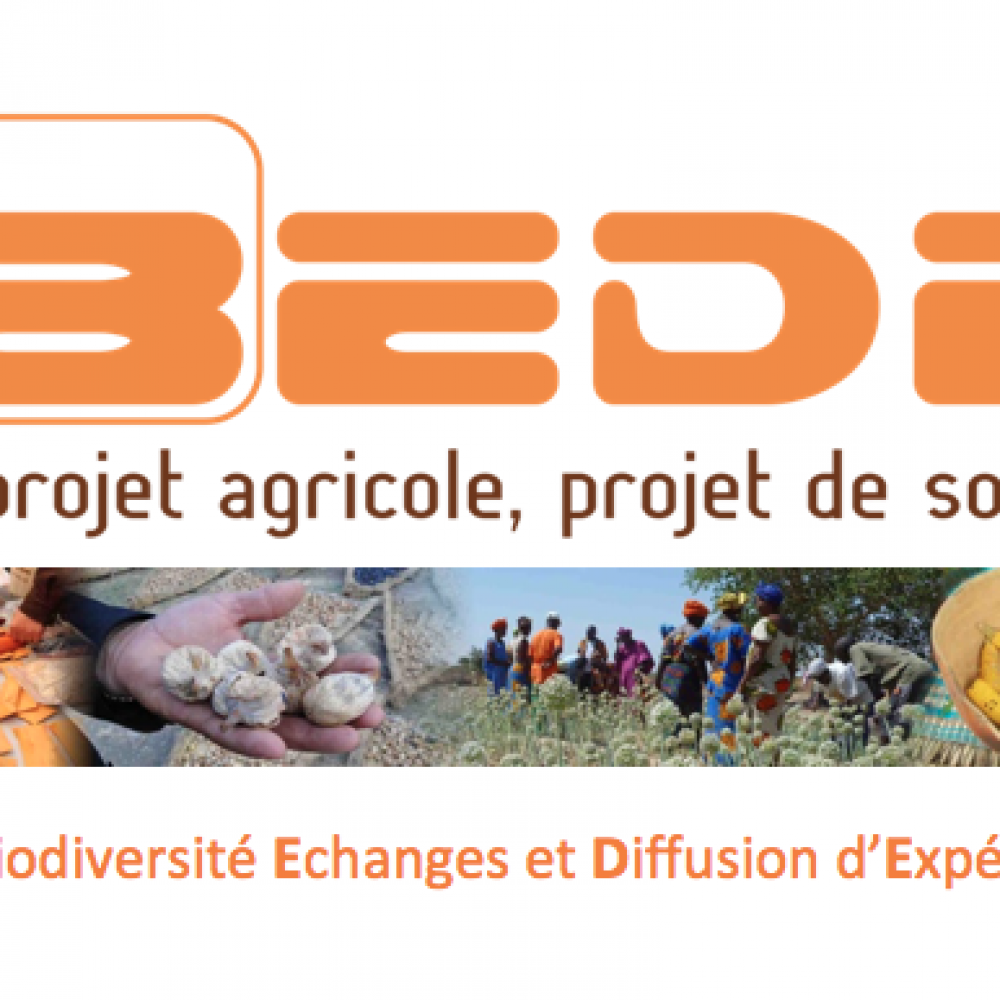 BEDE Association