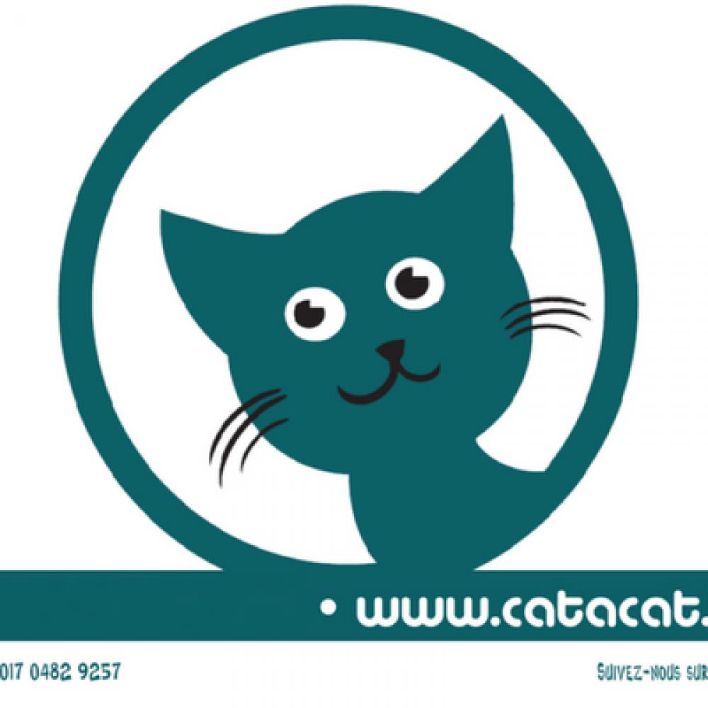 Cat à Cat ASBL