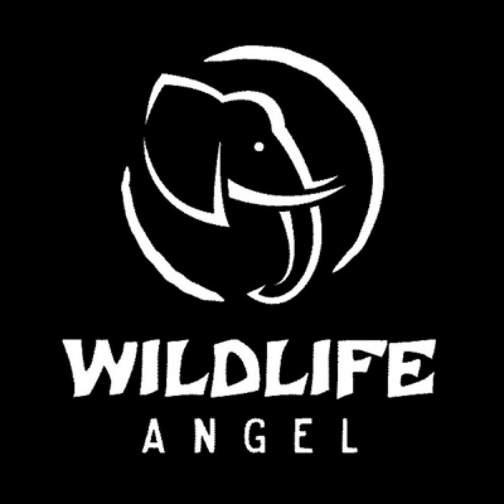 Wildlife Angel