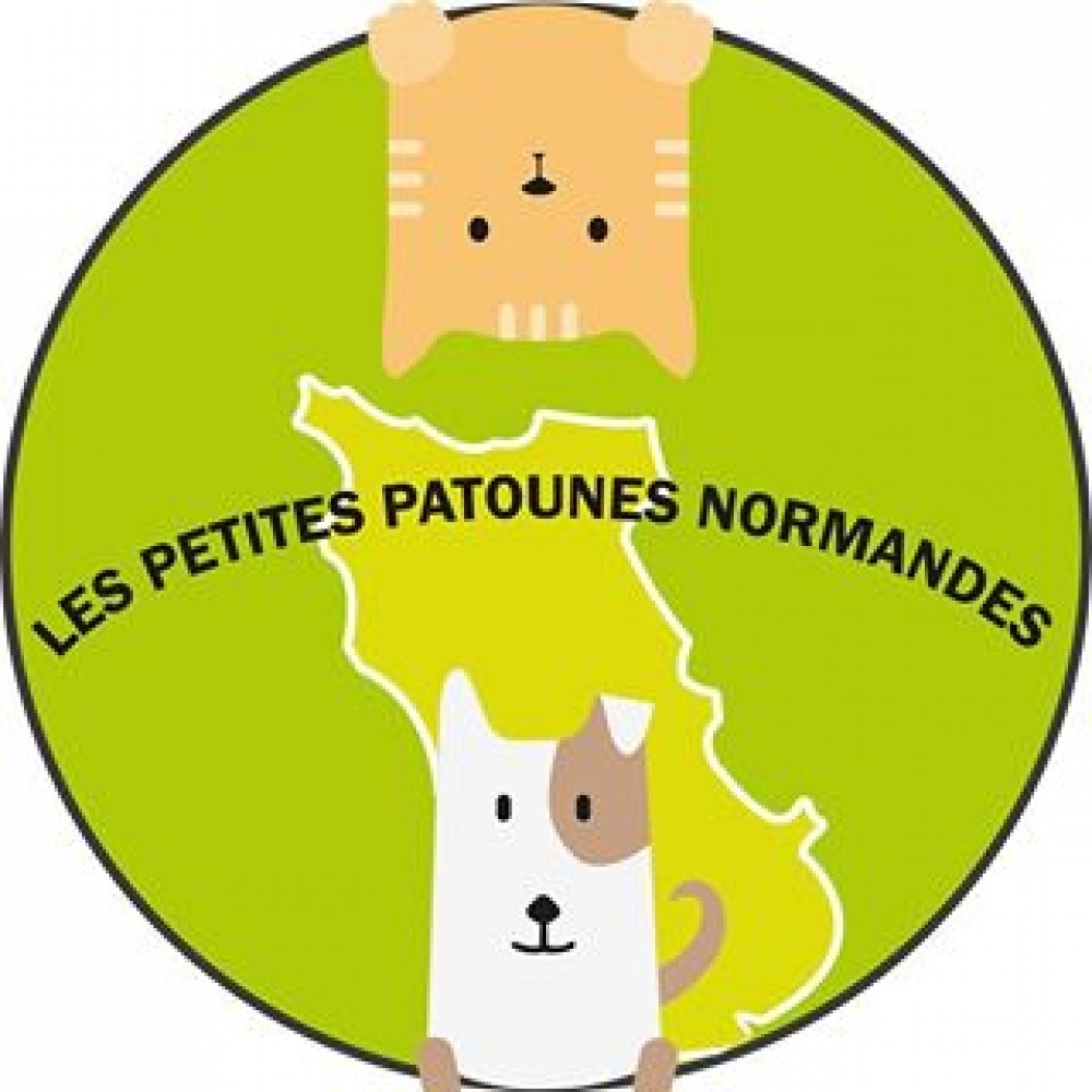LES PETITES PATOUNES NORMANDES