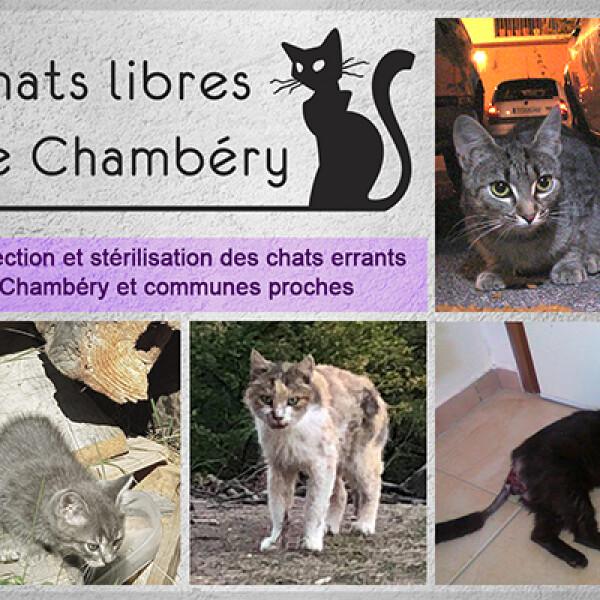 Les Chats Libres de Chambéry