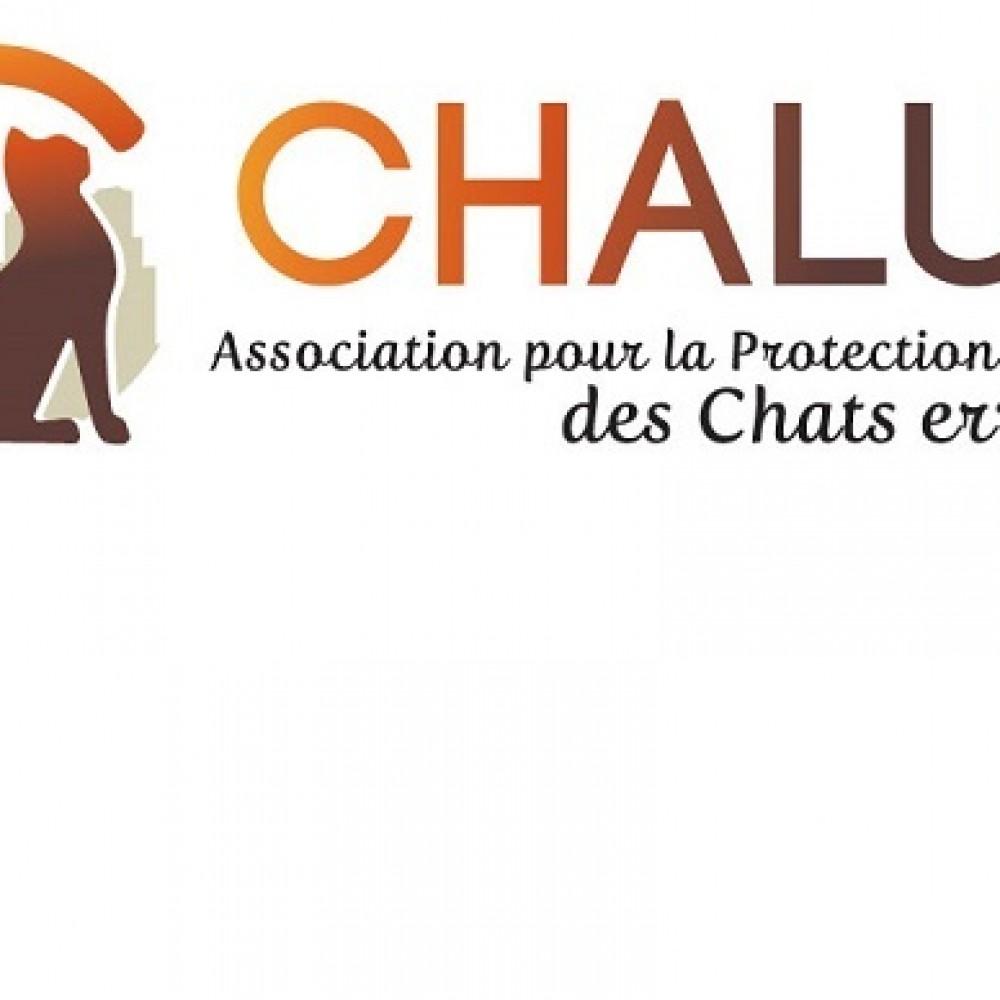 Association Chalut