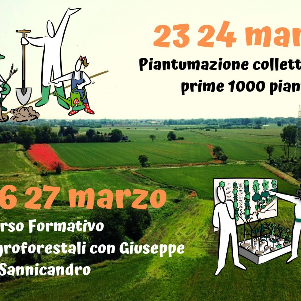 Una Agroforesta a Milano