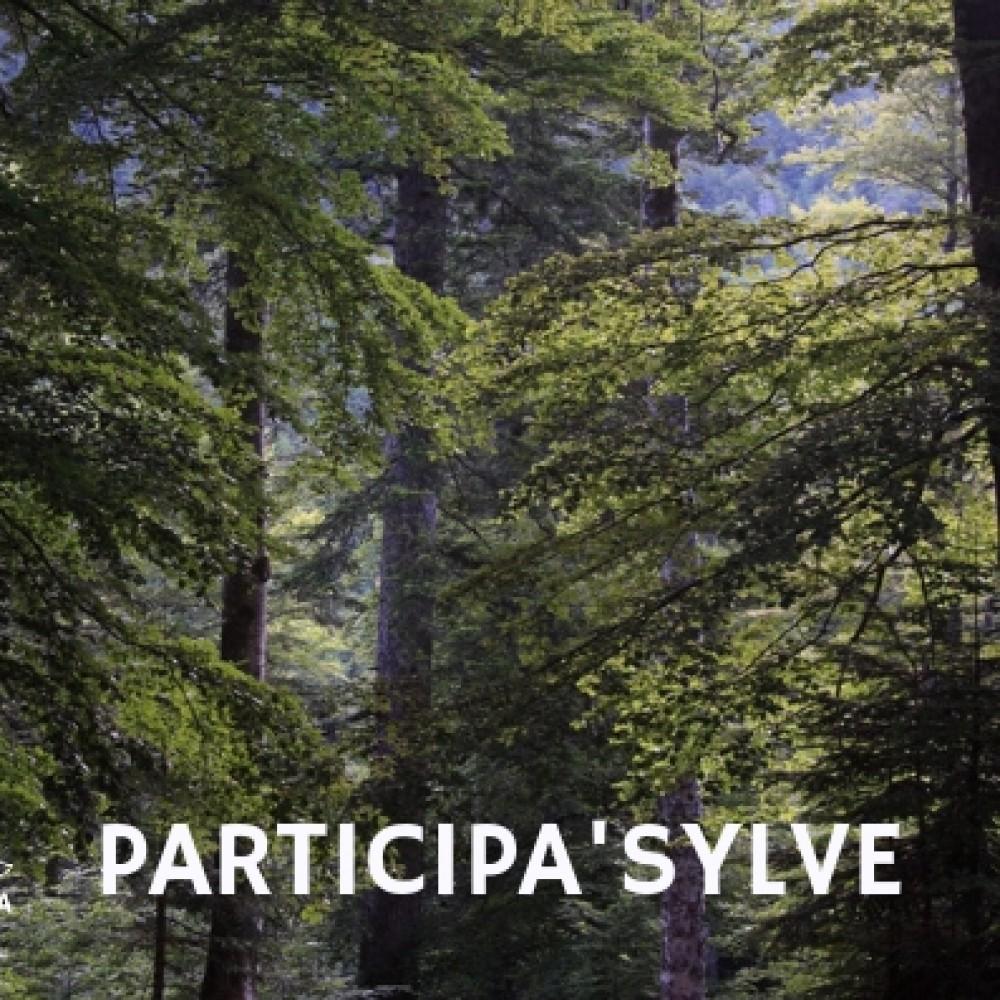 Participa'Sylve