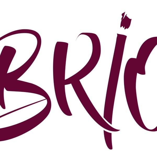 BRIO,  Fais un Bond pour la Réussite par l'Initiative et l'Ouverture