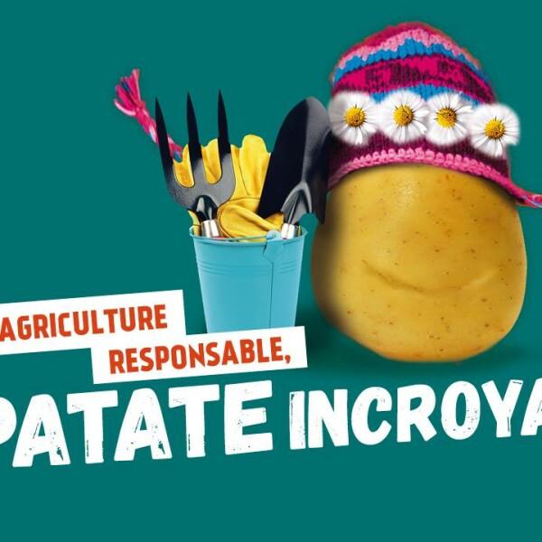Améliorer la culture de la pomme de terre et le niveau de vie de familles de Dhorpatan