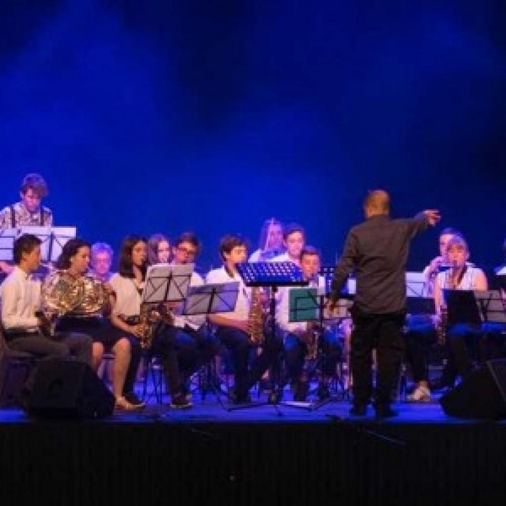 Orchestre des Petites Mains Symphoniques