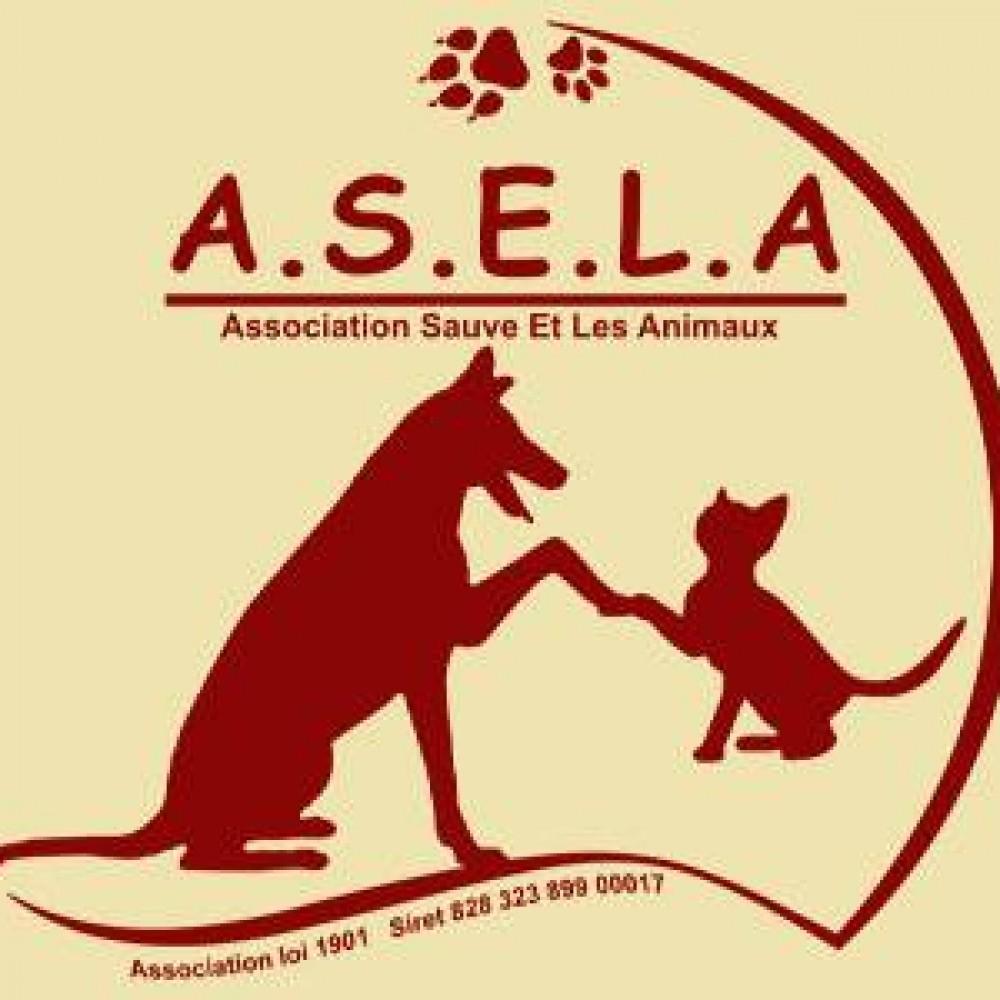Association ASELA