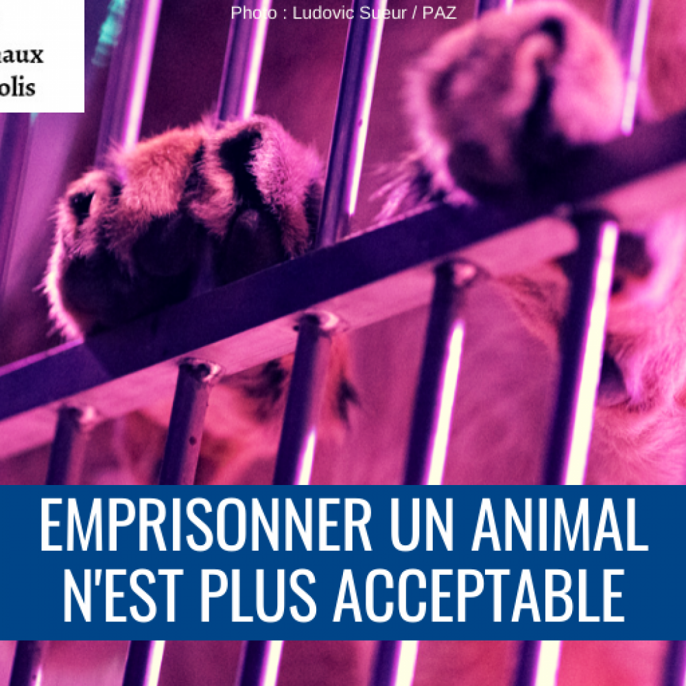 Paris Animaux Zoopolis