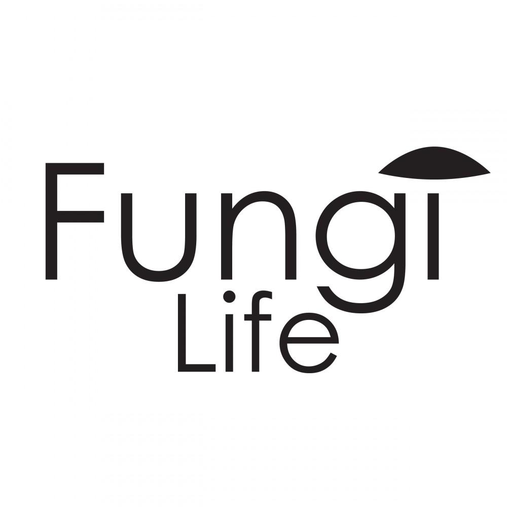 FungiLife, des champignons comme solution au plastique !