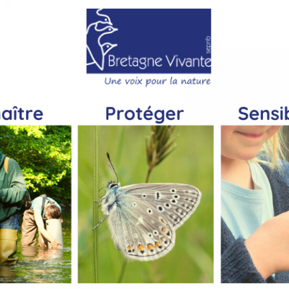 Bretagne Vivante-SEPNB, une voix pour la nature