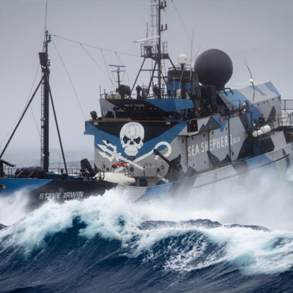 Sea Shepherd France