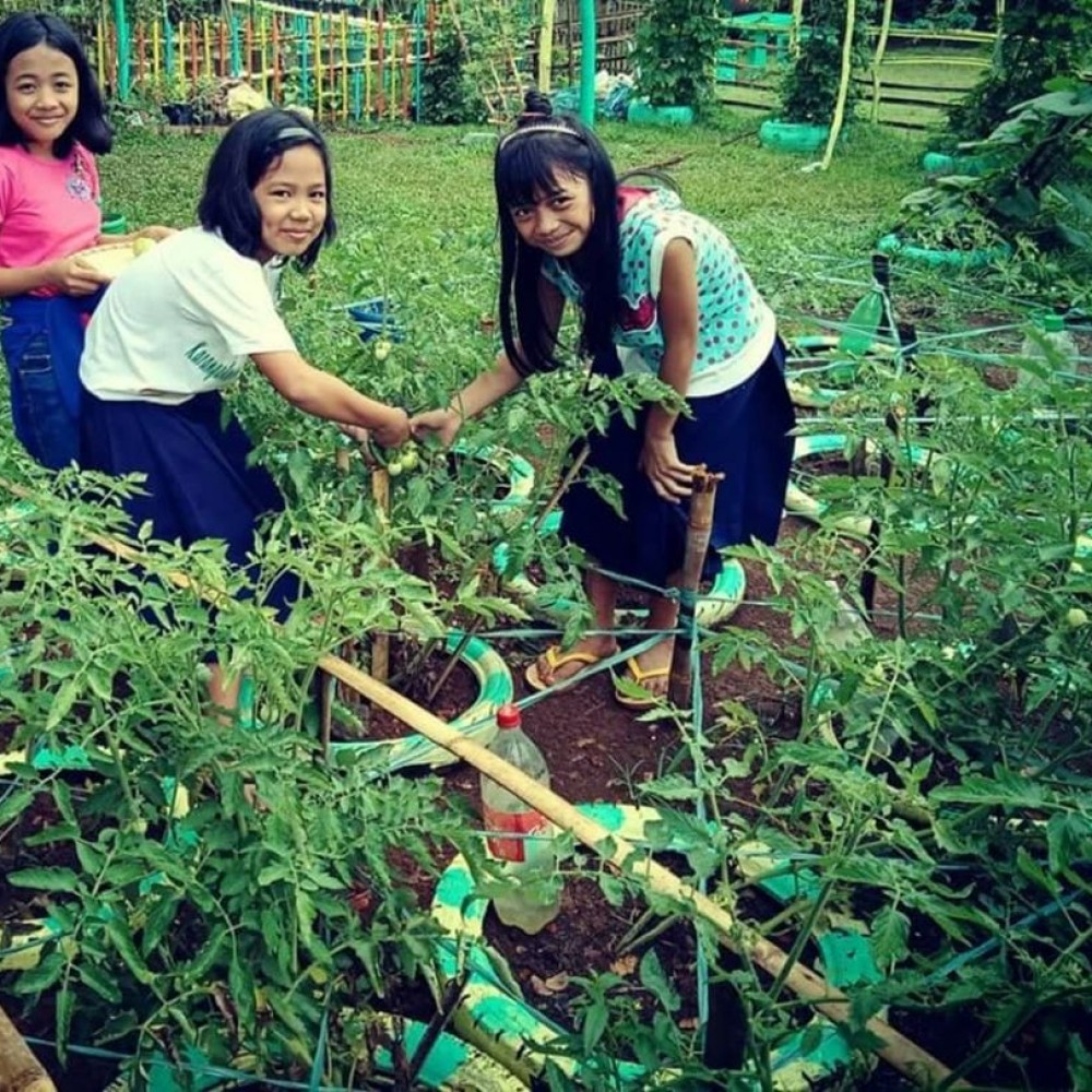 Manila Green School