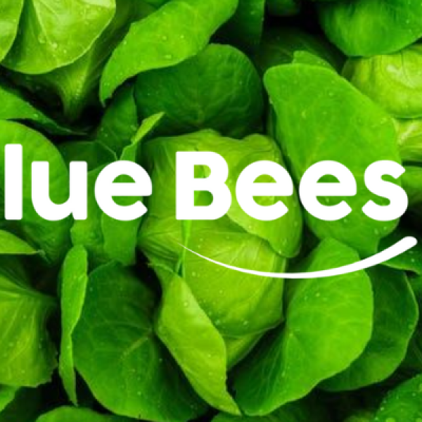 BlueBees