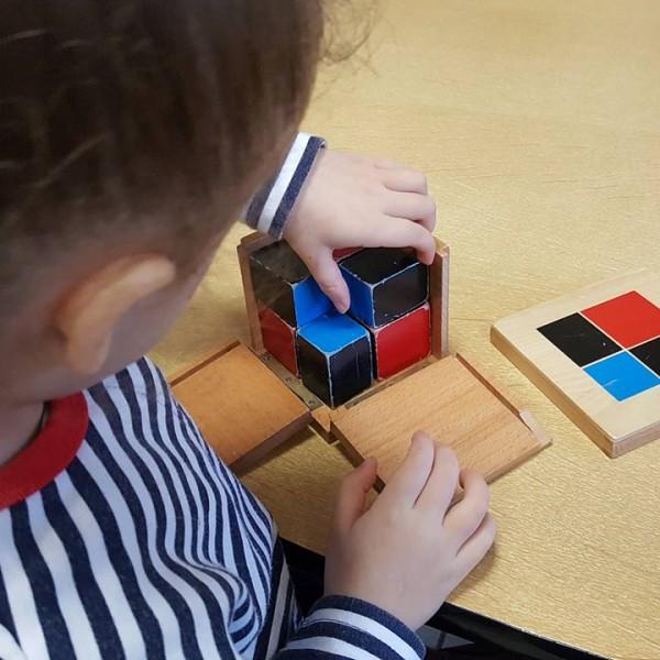 Public Montessori