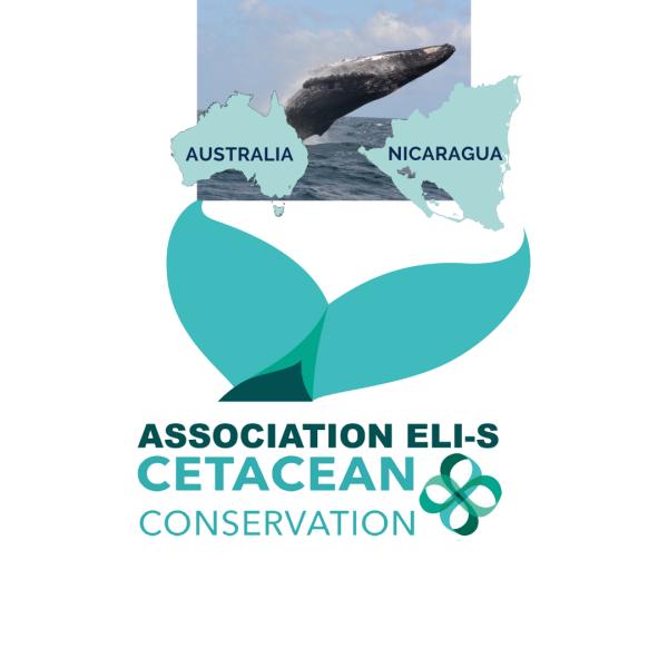Association ELI-S