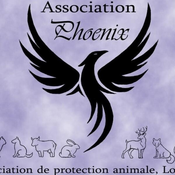 Association Phoenix